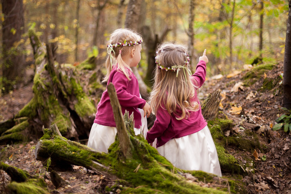 Лесные феи